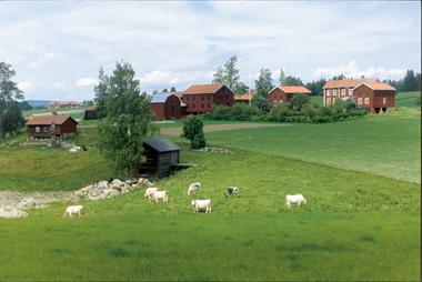 Västeräng380px-1.jpg